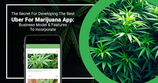 The secret for developing the best Uber for Marijuana app: Business model & Features to incorporate