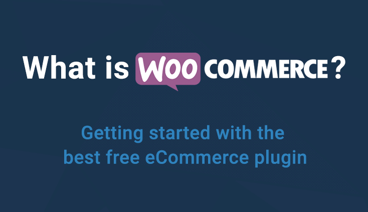 WooCommerce Inventory Management Options, Latest News Adda